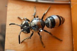 Роботизация: пчелы в США станут металлическими