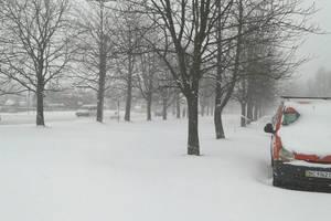 """День коммунальщика во Львове: снег """"выдал"""" 40% месячной нормы осадков"""