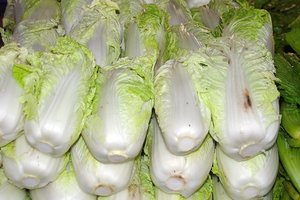 Prices for cabbage in Ukraine fell sharply