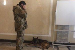 В Раде госохрана с собаками искала взрывчатку: Гелетей объяснил ситуацию