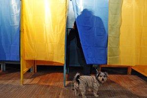 Большая часть украинцев еще не знает, кто выиграет следующие выборы президента