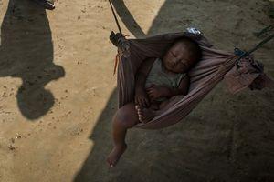 В Швеции исчезли тысячи детей