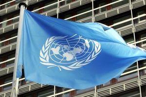 """ООН выразила свою позицию относительно """"выборов"""" в Крыму"""