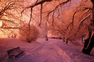 Anomaly: in the South of Odessa region, fell pink snow