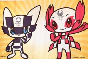 Власти Токио фильтрами очистят водоемы к Олимпиаде-2020