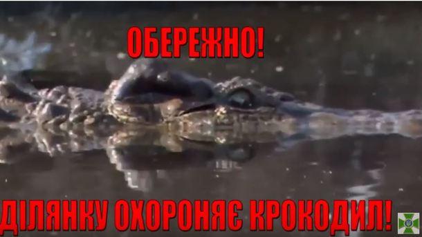 Геращенко: умышленно обученные крокодилы будут охранять границу Украины наДунае