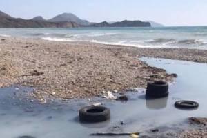 Назревает экологическая катастрофа: блогер показал шокирующие фото из Крыма