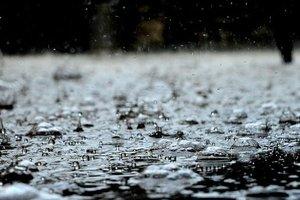 На Польшу обрушились дожди и сильный ветер