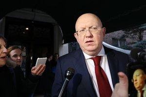 Россия в СБ ООН обвинила зарубежные спецслужбы в отравлении Скрипалей