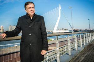 Саакашвили нашел работу в Нидерландах