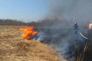 Шашлыки и окурки: под Киевом в выходные произошло более 200 пожаров