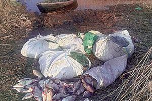 Пограничники поймали браконьеров с рыбой