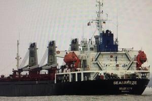Суд арестовал российское судно, воровавшее песок в украинском заповеднике