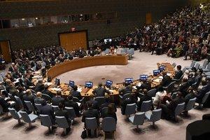 РФ не уполномочена расследовать химатаку в Сирии - Карен Пирс