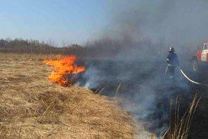 В Киеве резко вырастет опасность пожаров