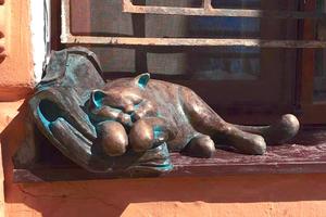 В Одессе увековечили кота Жванецкого