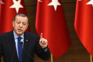 Эрдоган и Макрон обсудили необходимость политического урегулирования в Сирии