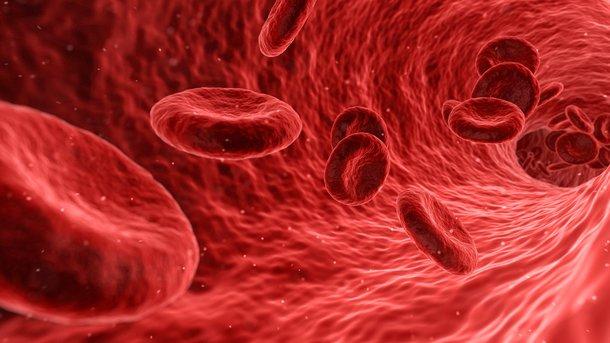 Что нужно знать о гемофилии