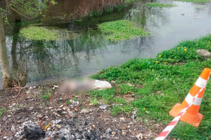На Буковине мать утопила в речке новорожденного сына