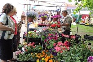 В Киеве пройдет ярмарка для садоводов и огородников