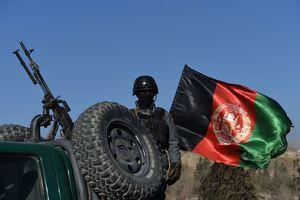 """Правительственные силы Афганистана провели массированную """"зачистку"""" талибов"""