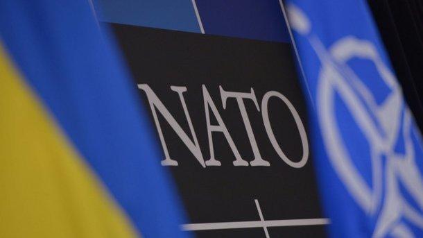Вступлению в НАТО: в Кабмине раскрыли планы Украины
