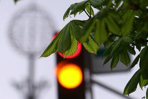 В Украине предложили отменить желтый сигнал светофора