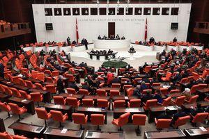 В Турции парламент поддержал досрочные президентские и парламентские выборы