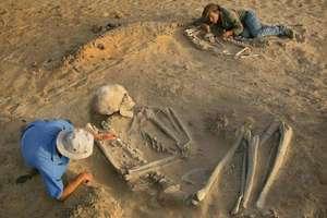 Археологи обнаружили останки мутанта