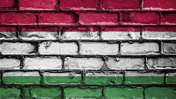 Стало известно, сколько паспортов раздала Венгрия наЗакарпатье— утрата для Украины