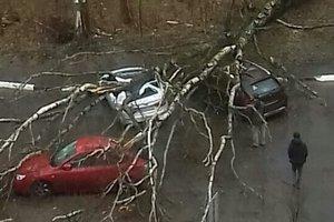 Ураган в Москве повалил сотни деревьев и убил ребенка