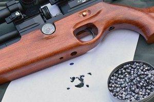 Выбираем пневматическое оружие