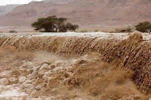 Наводнение в Израиле смыло два десятка студентов