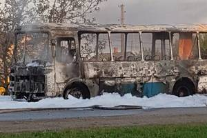 Под Кривым Рогом на ходу загорелся автобус: появились фото и видео
