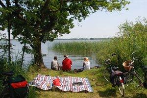 Застереження щодо відпочинку на природі: що взяти з собою на пікнік і як надати першу допомогу