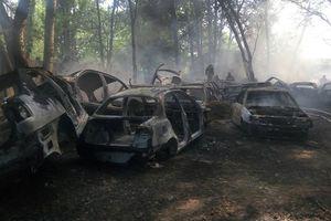 Пожар на Столичном шоссе в Киеве: появились новые подробности