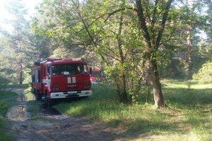 На Трухановом острове произошел очередной пожар