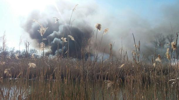 ВЗапорожском районе устранили огонь в личном секторе