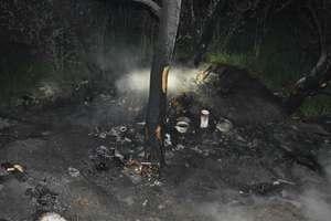 При пожаре в Днепре погибли три человека: появились фото и видео