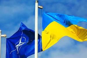 """Энергетическую безопасность Украины обсудили представители """"Нафтогаза"""" и НАТО"""