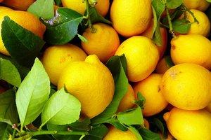 Какие фрукты обязательно нужно есть с косточками