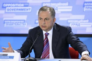 Борис Колесников: Мир и новая Конституция позволят Украине преодолеть кризис и возродить экономику