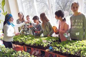 Как родители могут повлиять на учебный процесс своих детей в Украине