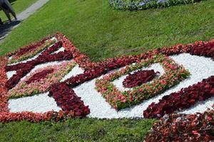 Как выглядит рушник из цветов в Дарницком районе Киева