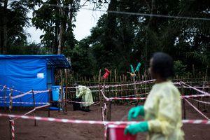 Вирус Эбола в Африке: уровень угрозы подняли до