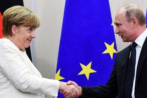 Меркель і Путін зробили заяву щодо миротворців на Донбасі