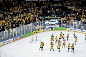 Онлайн матча Швеция – США на чемпионате мира по хоккею