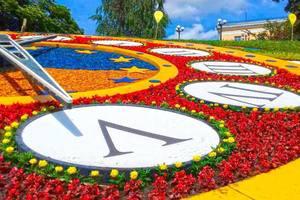 Как выглядят яркие цветочные часы в центре Киева