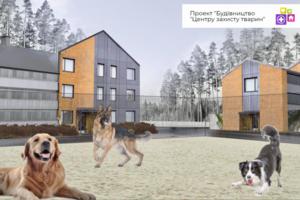 """Лучше, чем в Европе: в Киеве строят центр для спасения животных и запускают """"неотложку"""" для уличных собак"""