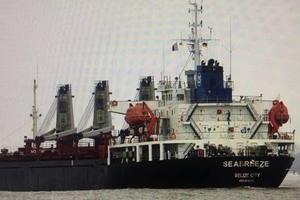 В Украине арестовали российское судно за добычу песка для Керченского моста